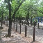 月島第一公園